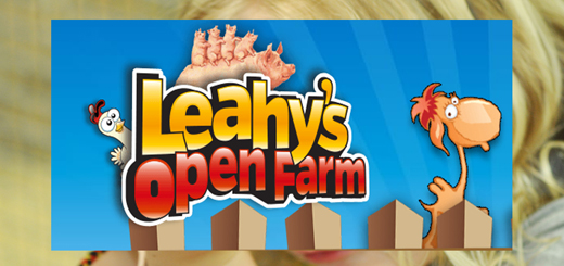 top visitor attraction Leahys Open Farm